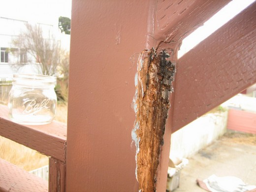 Sample of typical dry rot | wood rot at deck stairs railing