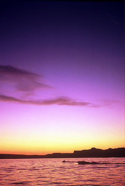 There is nothing quite like a beautiful sunset at Lake Powell.