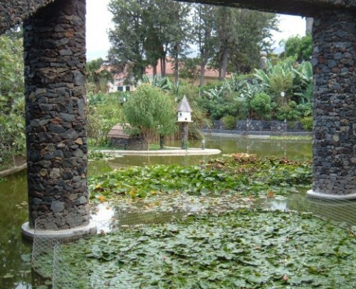 View of water gardens in Parque Taoro