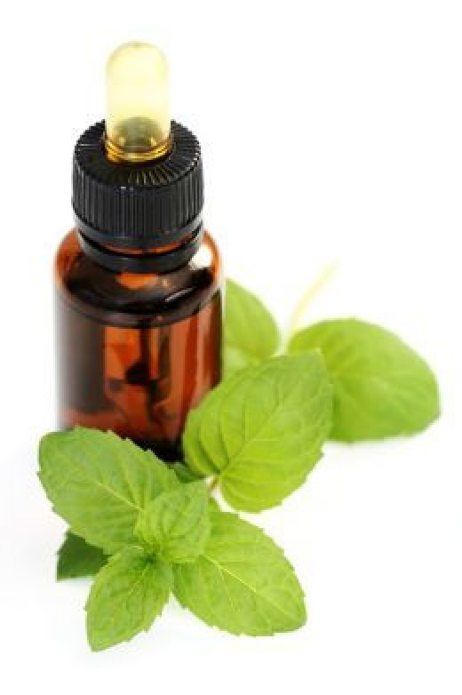 Refreshing and cool mint oil