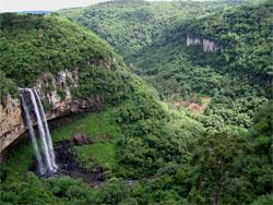 Photo Courtesy of Wikipedia- photo taken by Ricardo 630