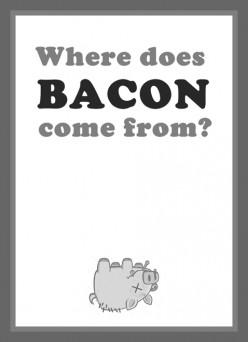 Where do bacon come from?