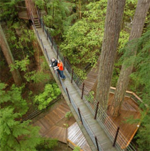 The Capilano tree-top adventure already exists and serves as a good prototype for similar eco-tourist projects for the future around the planet.