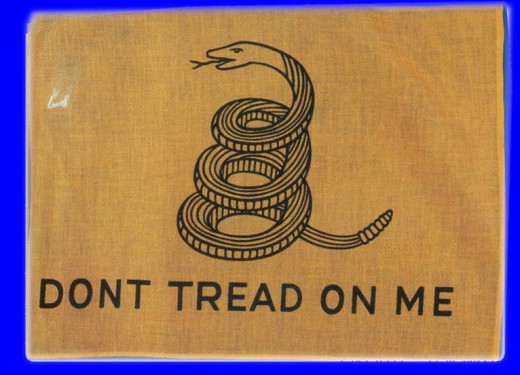 old american flag pictures. Colonial Flag - Don#39;t Tread On
