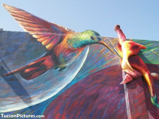 Hummingbird Mural in Central Tucson, Az