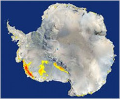 GLOBAL WARMING Analysis Finds Large Antarctic Area Has Melted