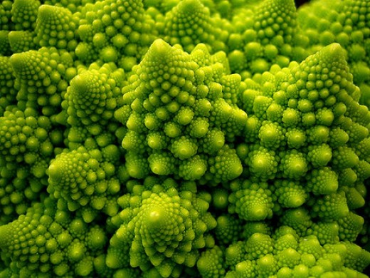 Natural fractals are all around us and are part of the natural order of the cosmos. Self similar recurrence is the order of the day for such phenomena.