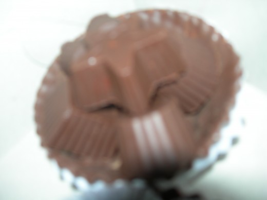 Molded Sugar-free Nut-filled Chocolate Candies