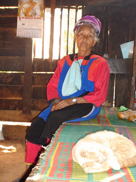 Lisu Elder with the cat I saved at the foot of the bed.