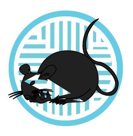 Rat Zodiac Sign