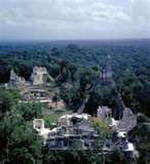 Tikal had an estimated 3000 buildings