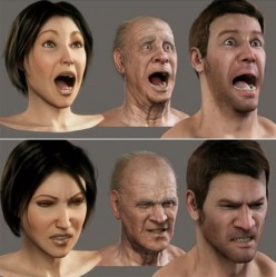 Basics of Facial Expressions and Human Emotions