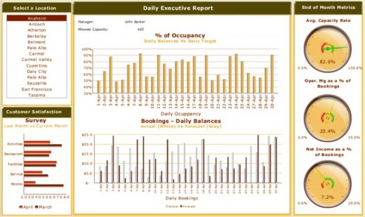 Business Intelligence tactical dashboard report type