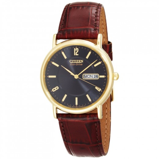 Citizen Men's BM8242-08E Eco-Drive Gold-Tone Leather Watch