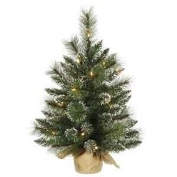 Beautiful Mini Christmas Trees!