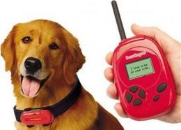 Dog translator.