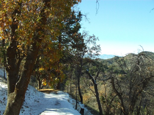 Snow along the trail in the San Bernardino Mountains.