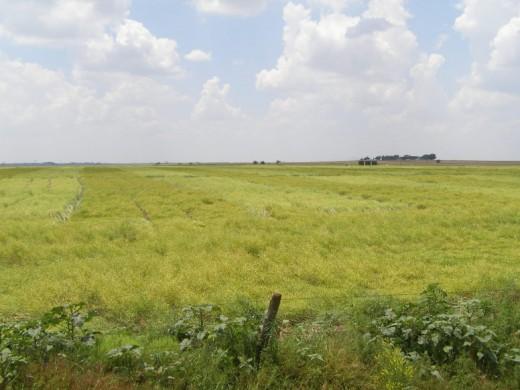 Great Plains, Oklahoma