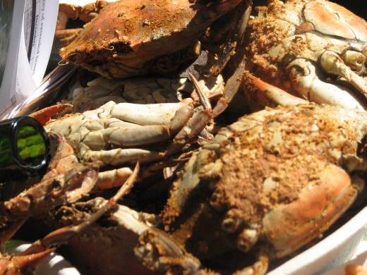 The blue crab is the Chesapeake Bay's signature crustacean. The Chesapeake Bay Blue Crab is world renowned for its sweet, succulent white meat. The area is also a great place to go crabbing!