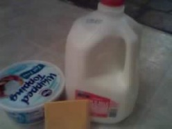 My Experience With Lactose Intolerance