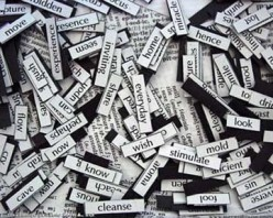 What is your favorite word?