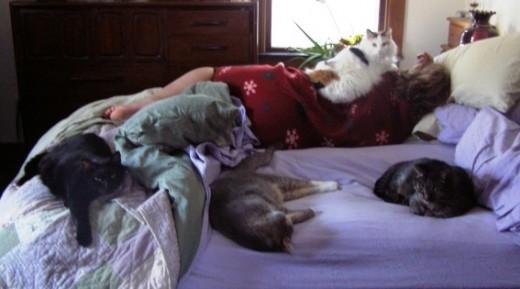 Mojo, Duncan, Foxy, Bear and Me
