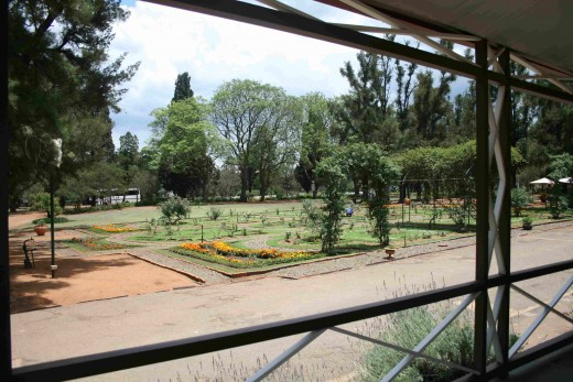 View of the garden from the west verandah