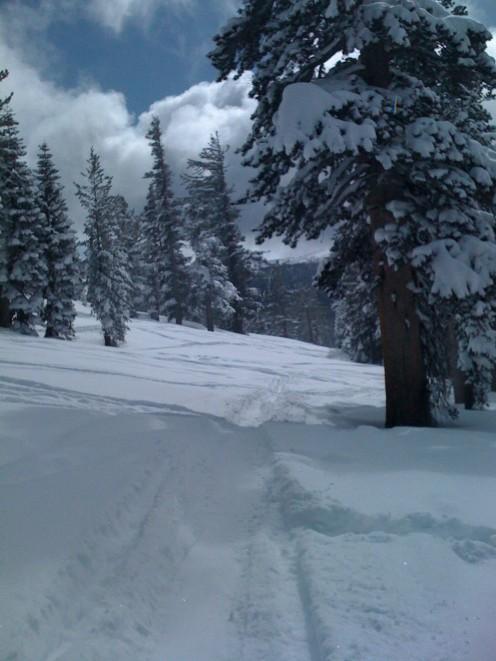 Skiing at Heavenly.