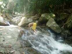 Bathing in a gushing stream will cleanse your body, meditating by it will cleanse your spirit.