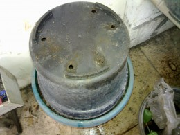 Put another pot which is put upside down to cover the composter.
