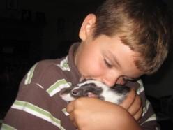 My son Logan with his pet rat Spencer