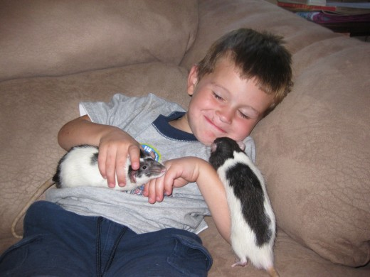 My son Alex with our 2 pet rats