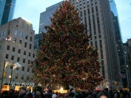 Close up of the tree at Rockefeller Center in NYC.