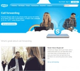 Diagram5.  The Skype call forwarding page