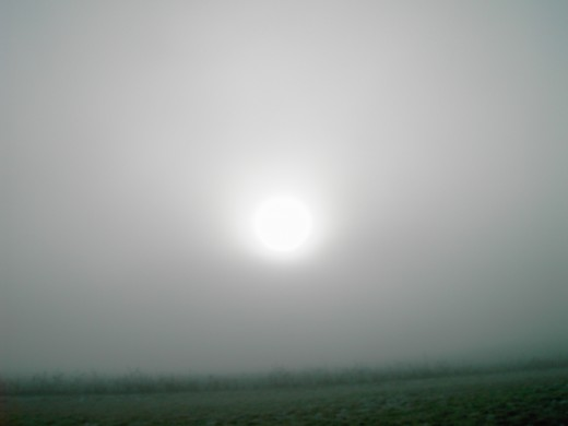 The sun lost its battle with the fog