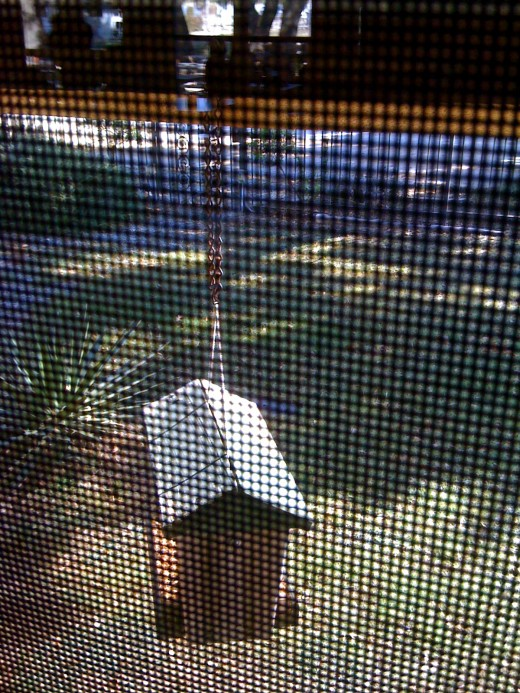 Bird house outside dining room window.