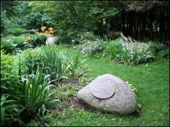 Farah's Garden - photo by Rosie2010