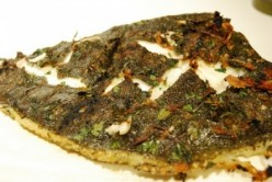 Grilled turbot on broad bean, and fennel mash recipe