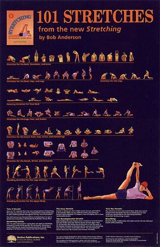 Stretching - 8 Great Exercise Posters to Buy Online - 7 Standards of Stretching and Quiz and More