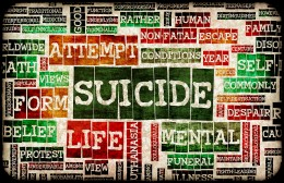 Suicide remains a major public health problem.  It is the 11th leading cause of death for all Americans.  Each year, more than 33,000 people take their own lives.  In addition, more than 376,000 are treated in emeremergency departments for self-infli