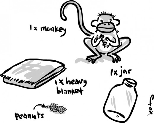 Monkey catch essentials.