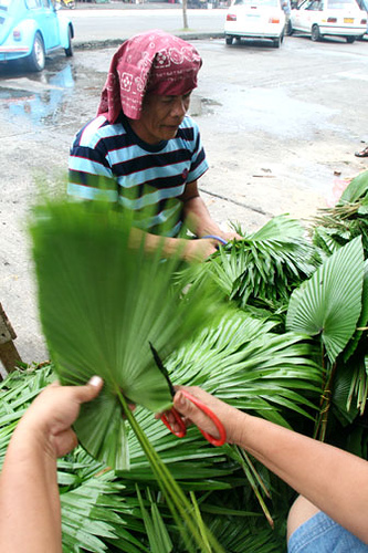 Anahaw leaves being prepared as a backdrop for flower arrangements.