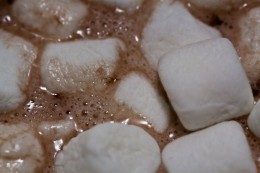 Nothing makes a cold winter's night warmer than a cup of hot cocoa.