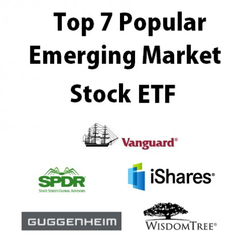 Emerging Markets Stock ETF logo