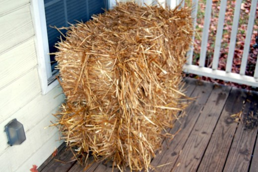 My wife learned the difference in a hay bale and a straw bale today :-)