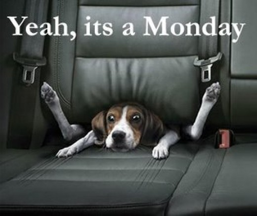 Monday, Rant