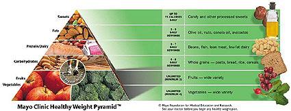 Mayo Clinic's Pyramid