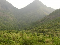 Why Should You Visit My Hometown - Palakkad ?