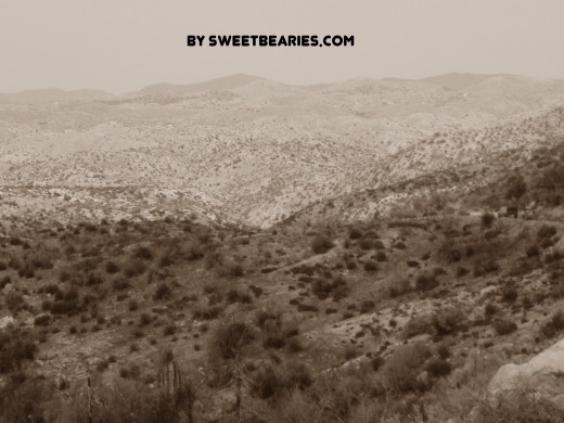 The beauty of walking through the desert side of the San Bernardino Mountains.