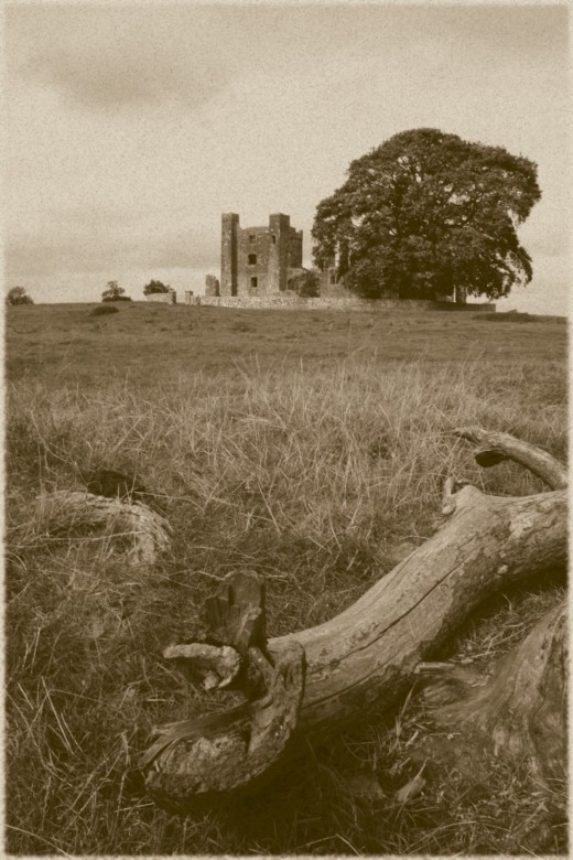 Abbey with foreground detail. Canon EOS SLR and Vintage effect.